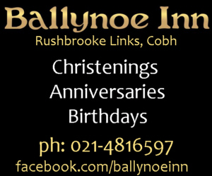 Ballynoe Inn